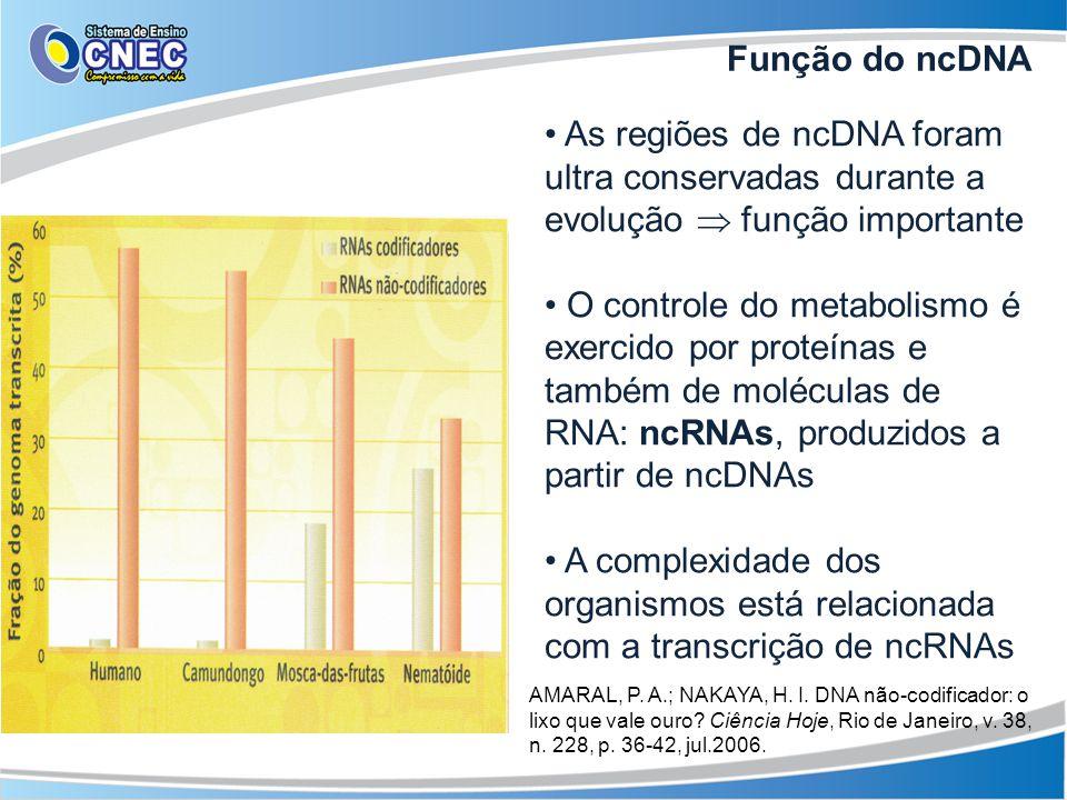 Regulação da editoração alternativa, inibição da tradução, localização celular de proteínas, desligamento de genes, etc OBS: outras formas de desligamento dos genes são: metilação: um conjunto de partículas de hidrogênio e carbono (CH 3 ) é capaz de se agrupar na base de alguns genes e silenciá- los ; modificação das histonas: estímulos externos podem alterar essas proteínas e tornar o DNA mais frouxo; Controle  EPIGENÉTICA Função do ncRNA