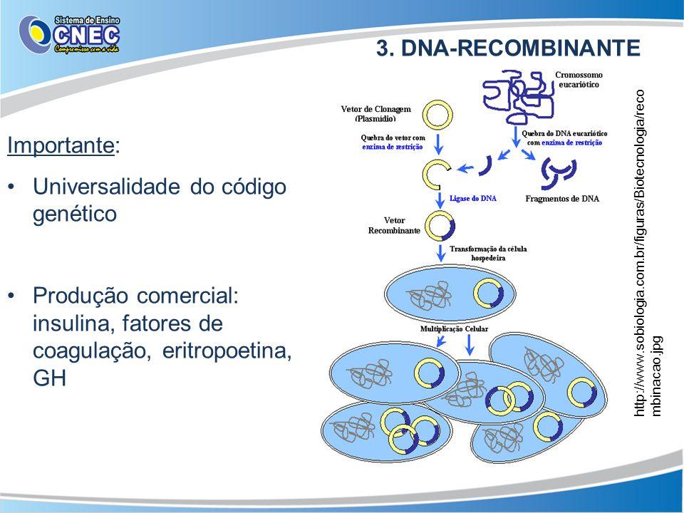 3. DNA-RECOMBINANTE Importante: Universalidade do código genético Produção comercial: insulina, fatores de coagulação, eritropoetina, GH http://www.so