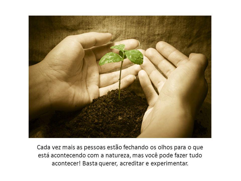 """O meio ambiente é frágil, mas não é tratado assim. """"...Mas,você pode fazer tudo acontecer! Basta querer, acreditar e experimentar."""