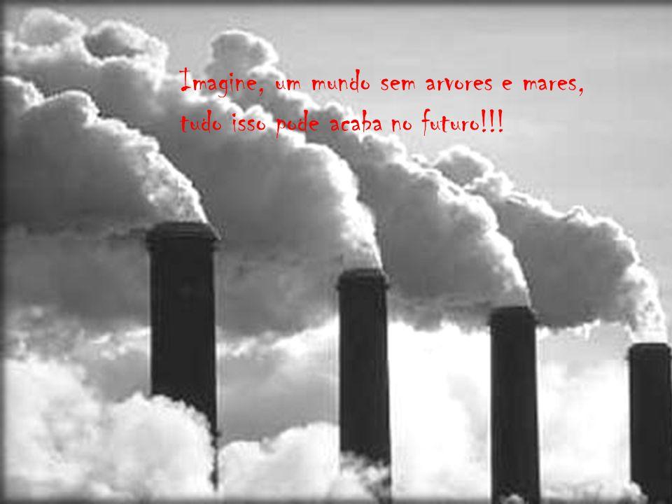 5 de junho dia mundial do meio ambiente.A preservação do meio ambiente começa com pequenas atitudes diárias, que fazem toda a diferença. Fernanda Vanz