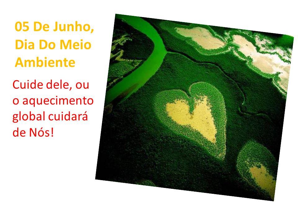 05 De Junho, Dia Do Meio Ambiente Cuide dele, ou o aquecimento global cuidará de Nós!