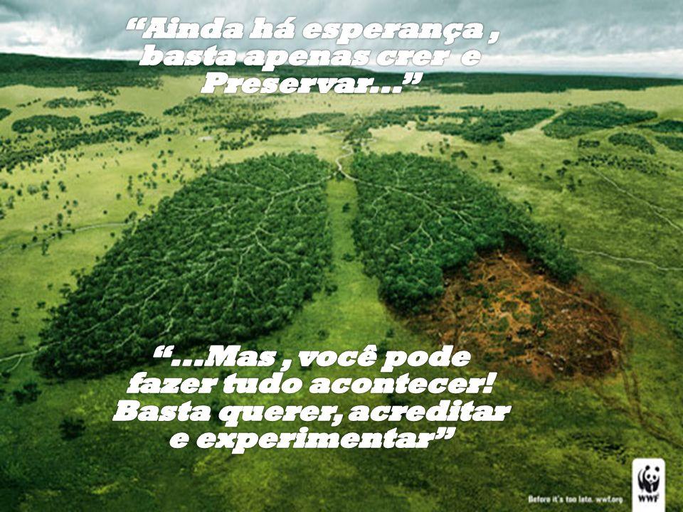 O ser humano é a única criatura da terra que pode destruir o planeta...