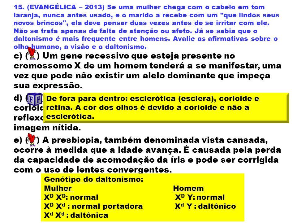 15. (EVANGÉLICA – 2013) Se uma mulher chega com o cabelo em tom laranja, nunca antes usado, e o marido a recebe com um
