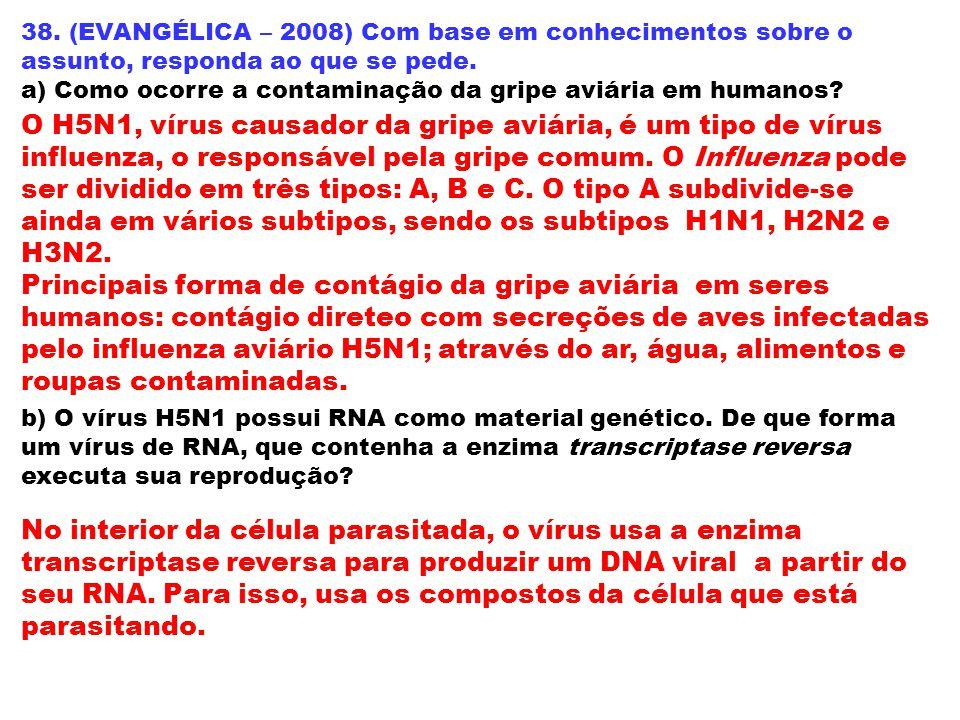 38. (EVANGÉLICA – 2008) Com base em conhecimentos sobre o assunto, responda ao que se pede. a) Como ocorre a contaminação da gripe aviária em humanos?