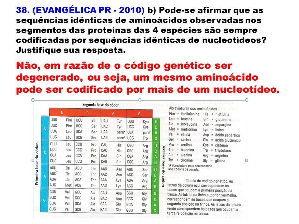 38. (EVANGÉLICA PR - 2010) b) Pode-se afirmar que as sequências idênticas de aminoácidos observadas nos segmentos das proteínas das 4 espécies são sem