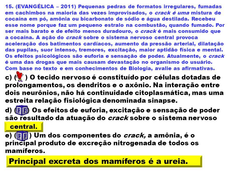 15. (EVANGÉLICA – 2011) Pequenas pedras de formatos irregulares, fumadas em cachimbos na maioria das vezes improvisados, o crack é uma mistura de coca