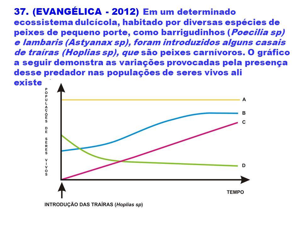 37. (EVANGÉLICA - 2012) Em um determinado ecossistema dulcícola, habitado por diversas espécies de peixes de pequeno porte, como barrigudinhos (Poecil