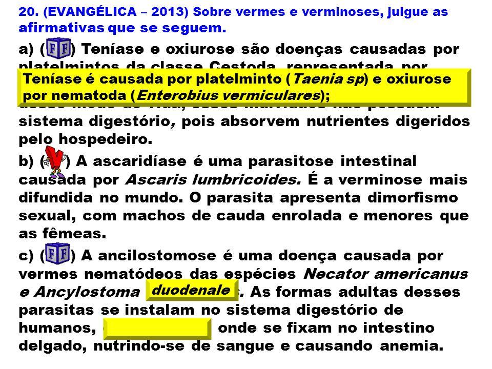 20. (EVANGÉLICA – 2013) Sobre vermes e verminoses, julgue as afirmativas que se seguem. a) ( ) Teníase e oxiurose são doenças causadas por platelminto