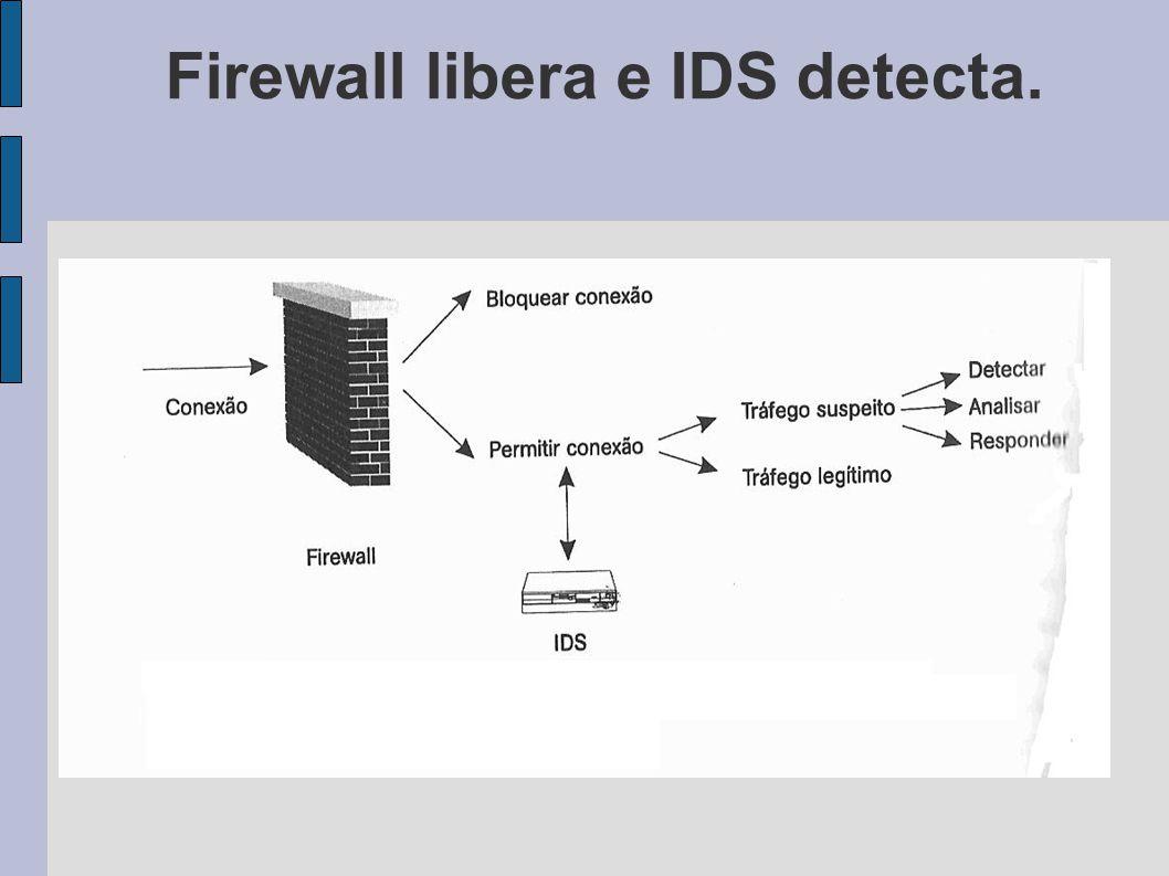 Firewall libera e IDS detecta.