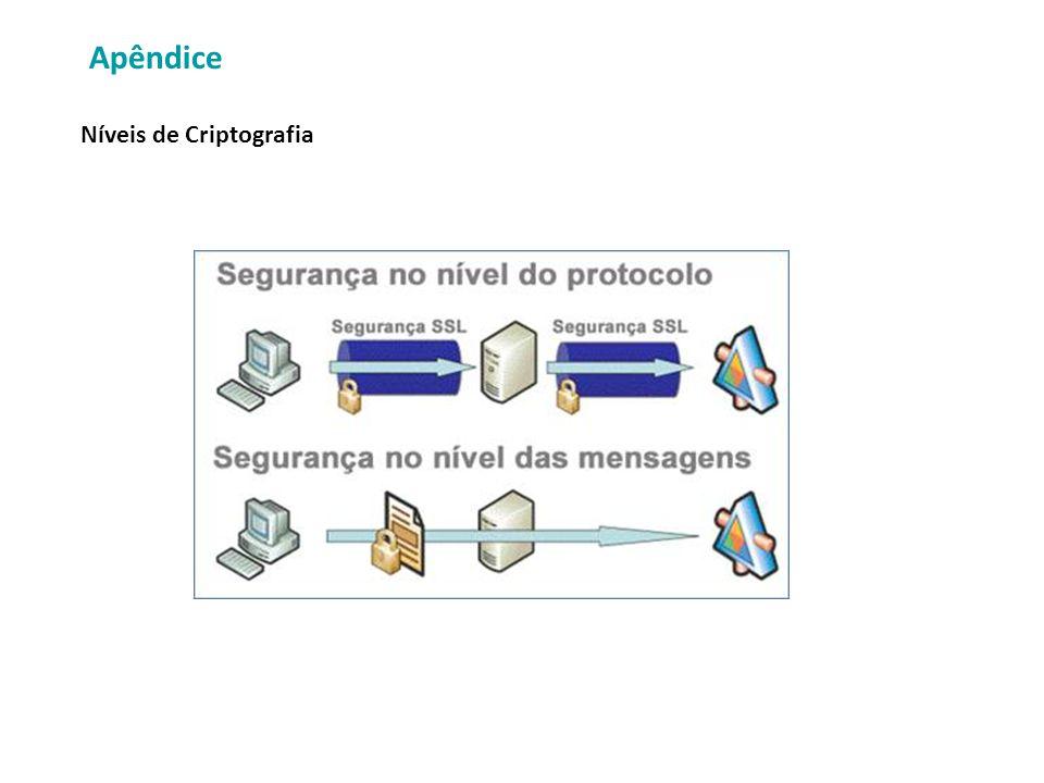 Apêndice Níveis de Criptografia