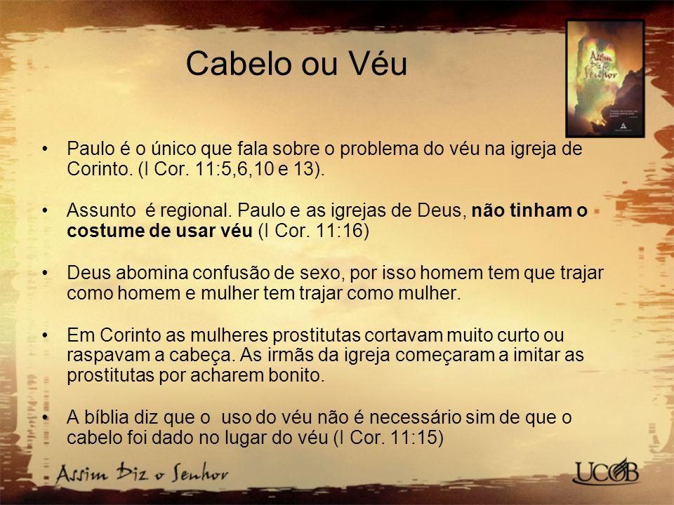 Cabelo ou Véu Paulo é o único que fala sobre o problema do véu na igreja de Corinto.
