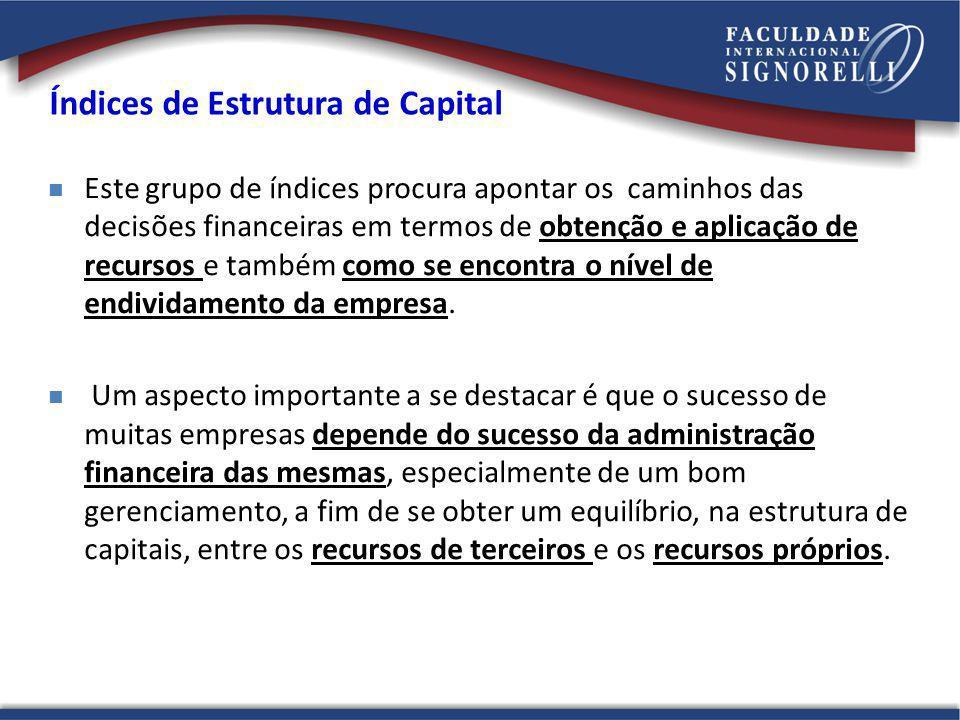 Índices de Estrutura de Capital Este grupo de índices procura apontar os caminhos das decisões financeiras em termos de obtenção e aplicação de recurs