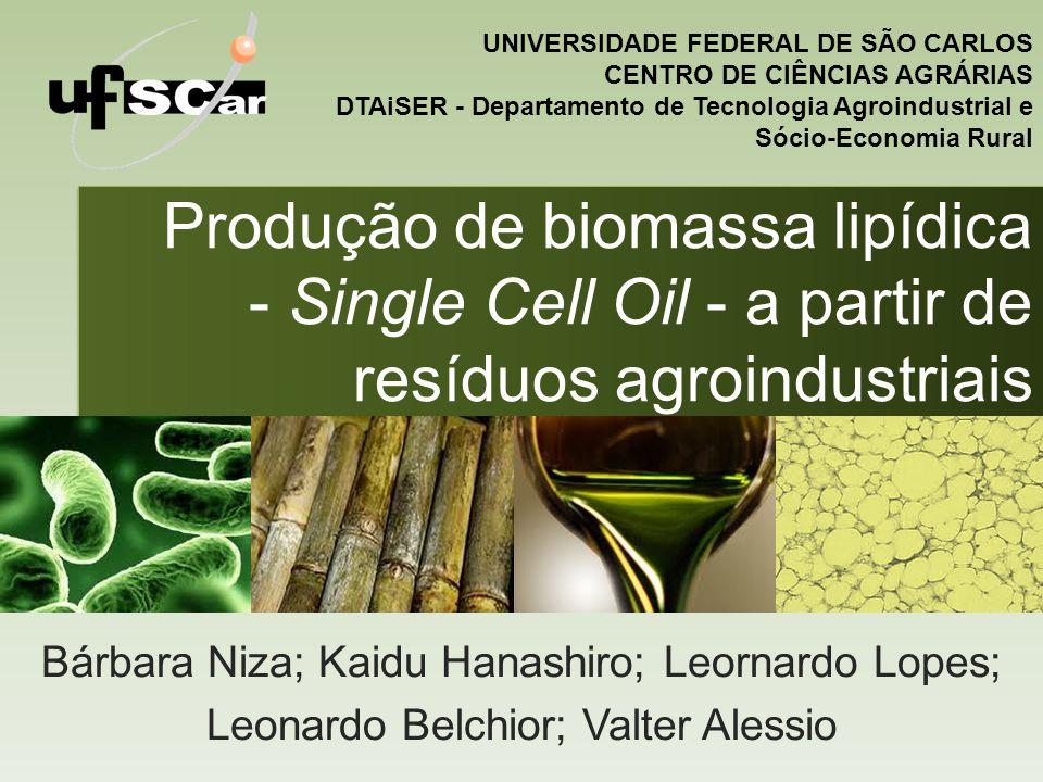 Produção de biomassa lipídica - Single Cell Oil - a partir de resíduos agroindustriais Bárbara Niza; Kaidu Hanashiro; Leornardo Lopes; Leonardo Belchi
