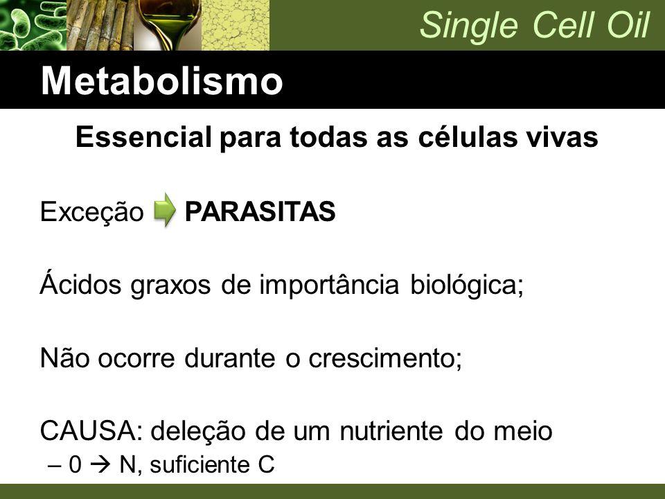 Single Cell Oil Metabolismo Essencial para todas as células vivas Exceção PARASITAS Ácidos graxos de importância biológica; Não ocorre durante o cresc