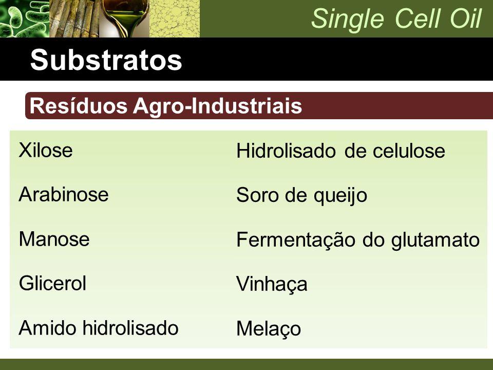 Single Cell Oil Substratos Resíduos Agro-Industriais Xilose Arabinose Manose Glicerol Amido hidrolisado Hidrolisado de celulose Soro de queijo Ferment