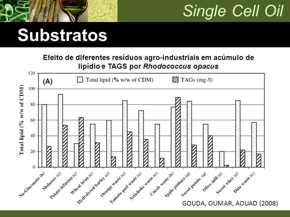 Single Cell Oil Substratos Efeito de diferentes resíduos agro-industriais em acúmulo de lipídio e TAGS por Rhodococcus opacus GOUDA, OUMAR, AOUAD (200