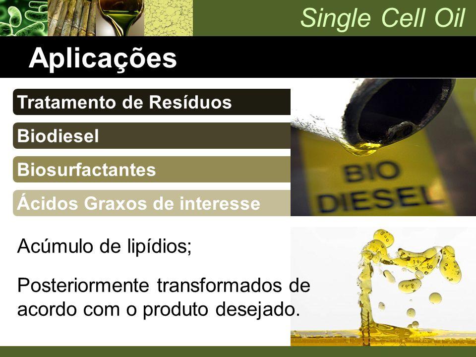 Single Cell Oil Aplicações Tratamento de Resíduos Biodiesel Biosurfactantes Ácidos Graxos de interesse Acúmulo de lipídios; Posteriormente transformad