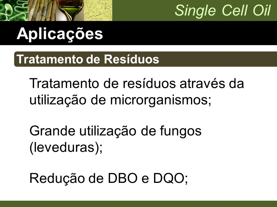 Single Cell Oil Aplicações Tratamento de resíduos através da utilização de microrganismos; Grande utilização de fungos (leveduras); Redução de DBO e D