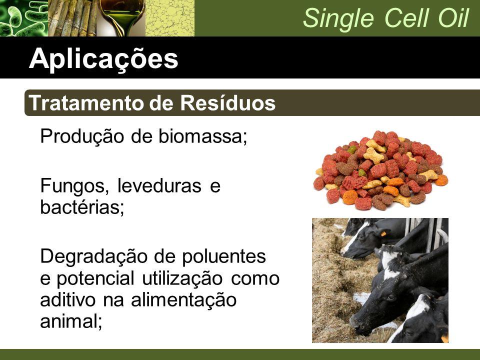 Single Cell Oil Aplicações Produção de biomassa; Fungos, leveduras e bactérias; Degradação de poluentes e potencial utilização como aditivo na aliment