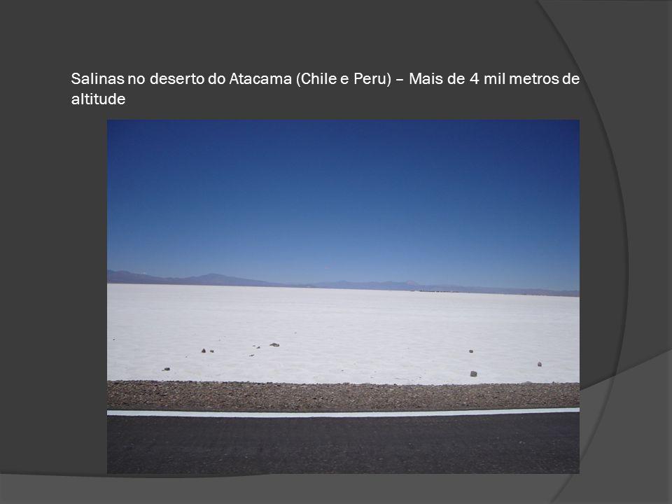 Salinas no deserto do Atacama (Chile e Peru) – Mais de 4 mil metros de altitude