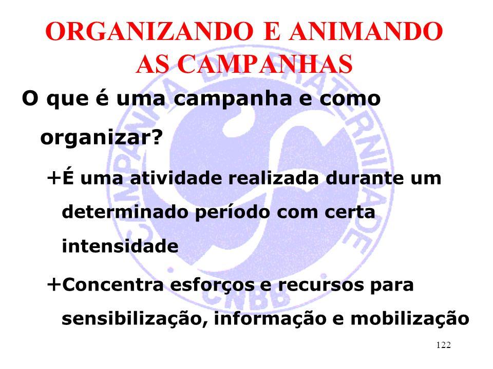 ORGANIZANDO E ANIMANDO AS CAMPANHAS O que é uma campanha e como organizar?  É uma atividade realizada durante um determinado período com certa intens