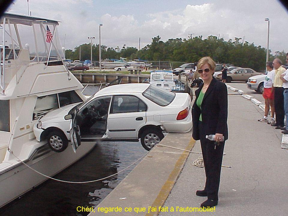 Chéri, regarde ce que j'ai fait à l'automobile!