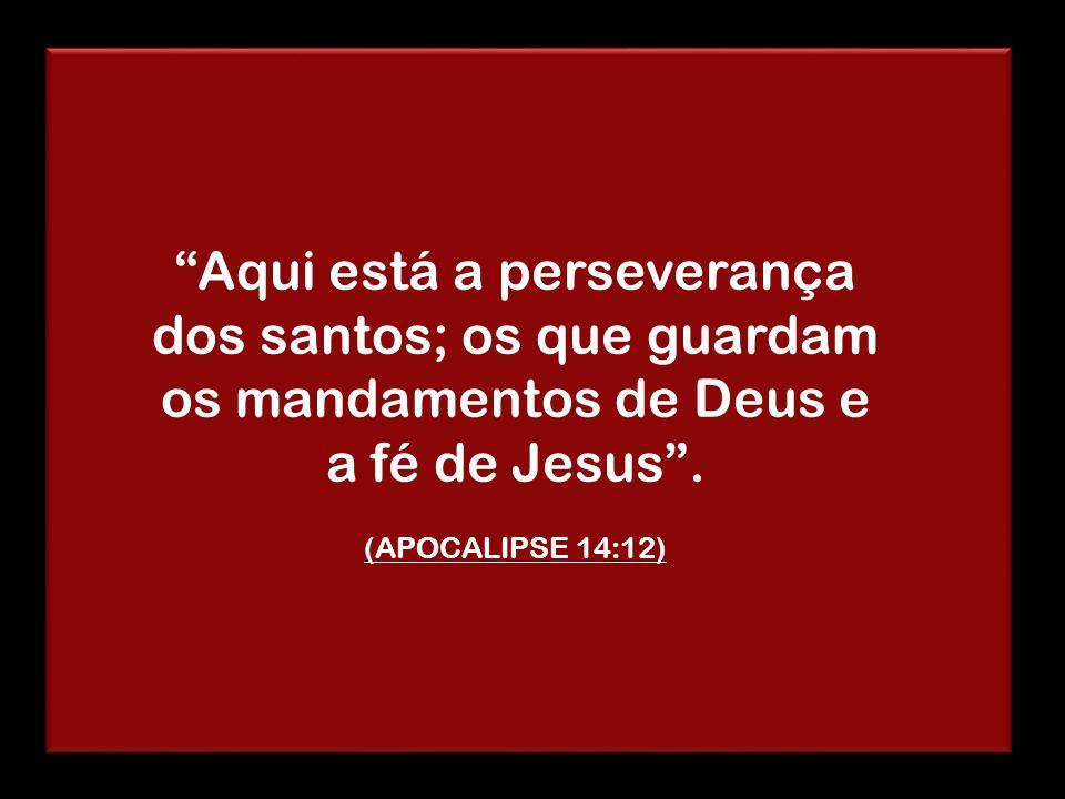"""""""Aqui está a perseverança dos santos; os que guardam os mandamentos de Deus e a fé de Jesus"""". (APOCALIPSE 14:12)"""