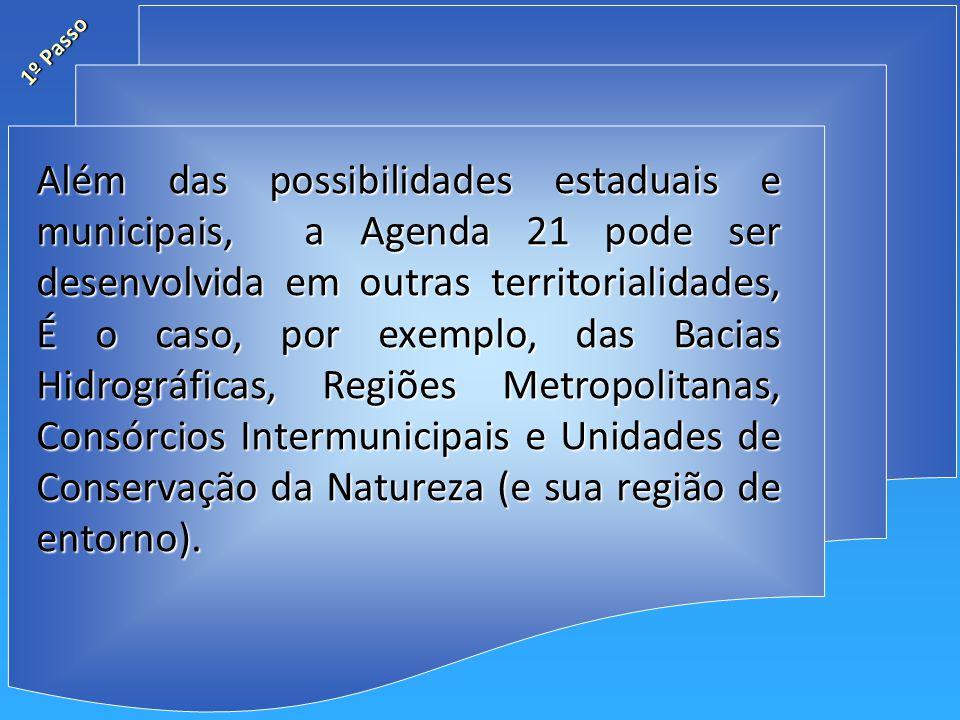 Além das possibilidades estaduais e municipais, a Agenda 21 pode ser desenvolvida em outras territorialidades, É o caso, por exemplo, das Bacias Hidrográficas, Regiões Metropolitanas, Consórcios Intermunicipais e Unidades de Conservação da Natureza (e sua região de entorno).