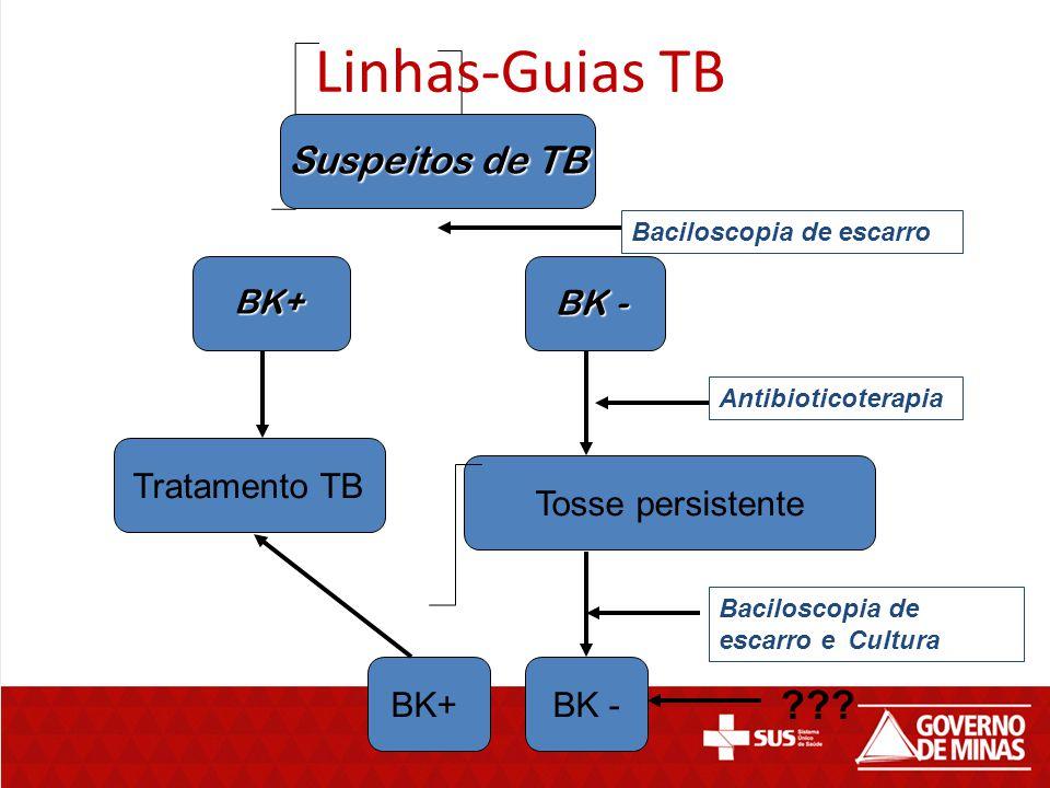Suspeitos de TB BK+ BK - Tratamento TB Tosse persistente BK+ Linhas-Guias TB Baciloscopia de escarro Baciloscopia de escarro e Cultura BK - ??? Antibi