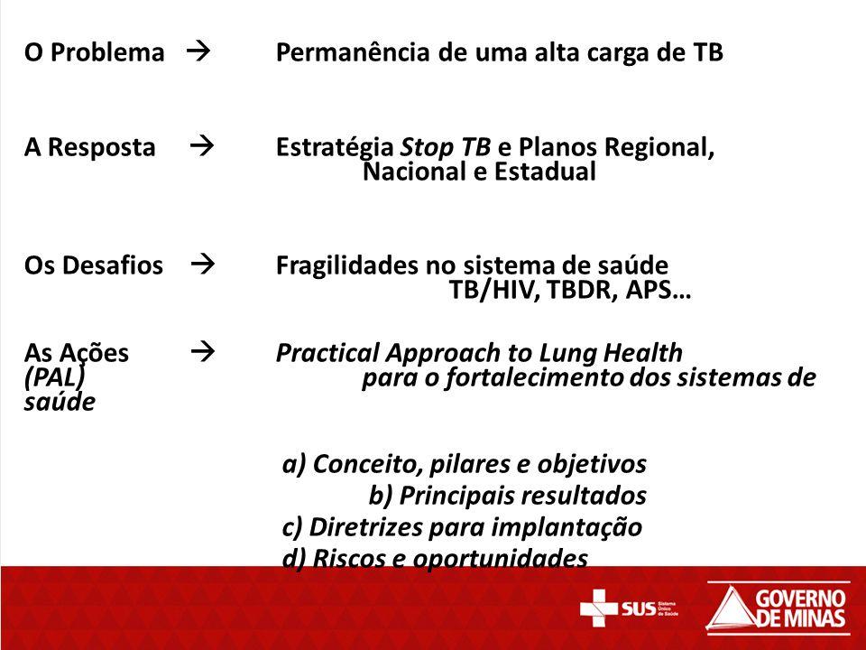 O Problema  Permanência de uma alta carga de TB A Resposta  Estratégia Stop TB e Planos Regional, Nacional e Estadual Os Desafios  Fragilidades no