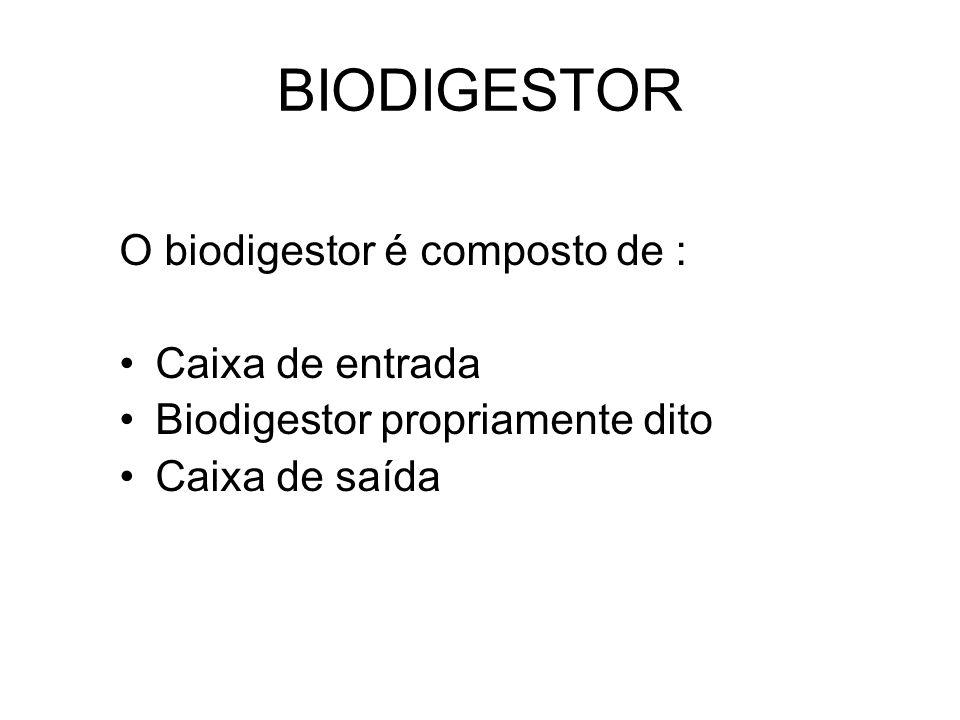 BIODIGESTOR O biodigestor é composto de : Caixa de entrada Biodigestor propriamente dito Caixa de saída
