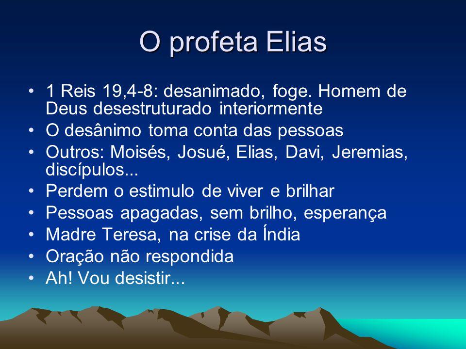 O profeta Elias 1 Reis 19,4-8: desanimado, foge. Homem de Deus desestruturado interiormente O desânimo toma conta das pessoas Outros: Moisés, Josué, E