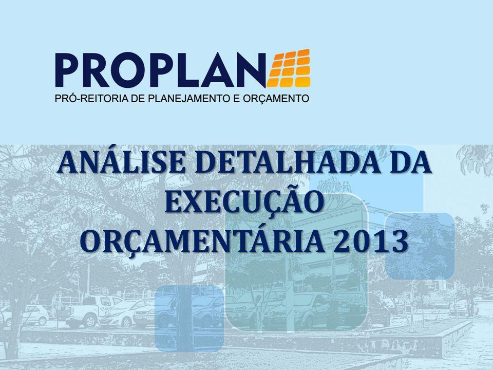 ANÁLISE DETALHADA DA EXECUÇÃO ORÇAMENTÁRIA 2013