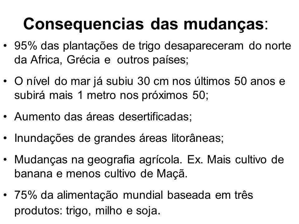 Áreas alagadas em Florianópolis