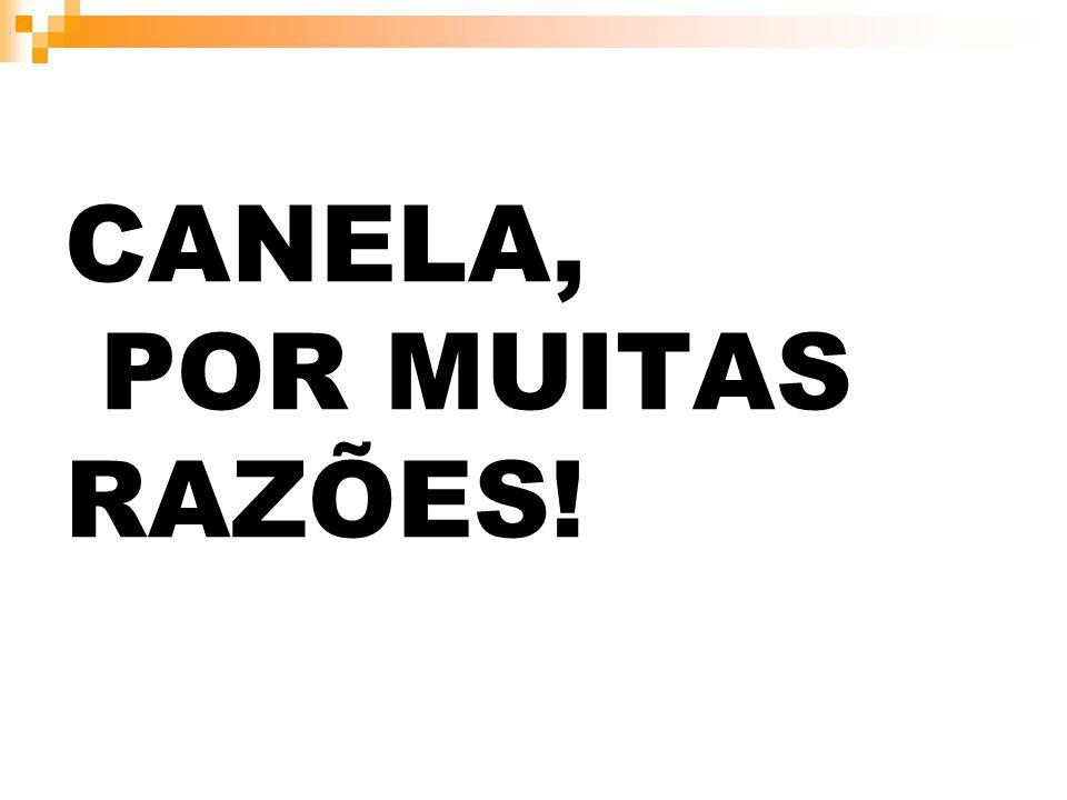 CANELA, POR MUITAS RAZÕES!