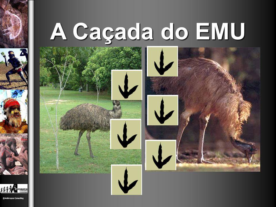 A Caçada do EMU