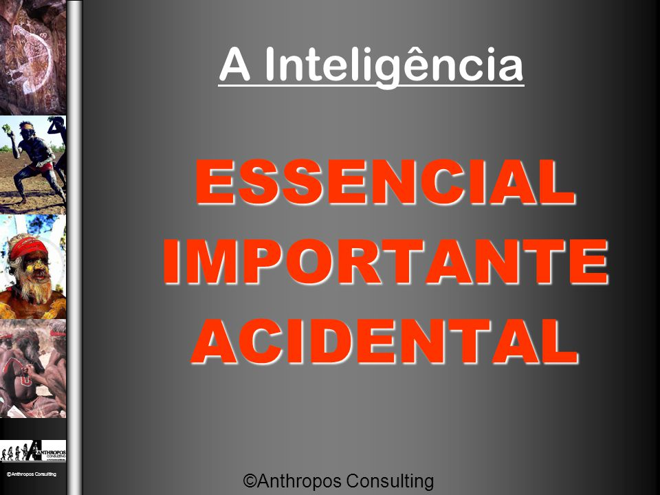 A Inteligência ESSENCIALIMPORTANTEACIDENTAL ©Anthropos Consulting