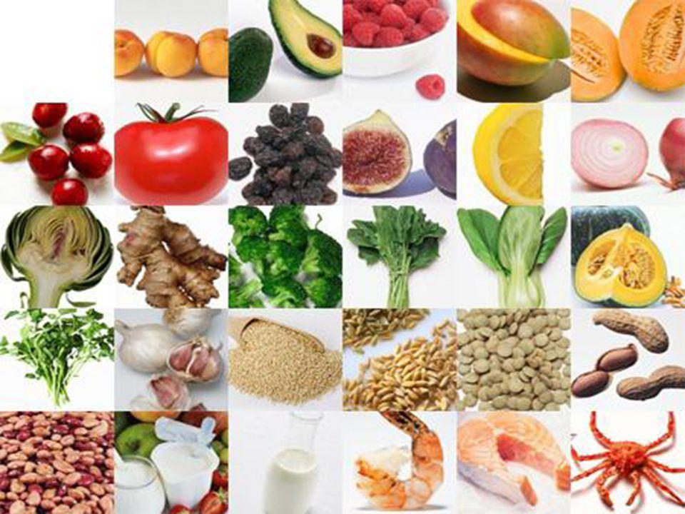 Definições de Alimentação Contextos da Alimentação Alimentação e Evolução Humana Desenvolvimento Tecnológico Crescimento Demográfico x Alimentação Fome Agricultura Moderna Pecuária Moderna Transgênicos