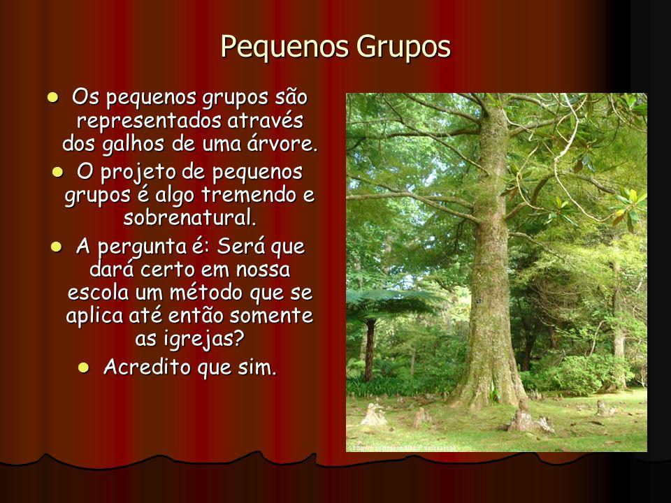 Pequenos Grupos Os pequenos grupos são representados através dos galhos de uma árvore. Os pequenos grupos são representados através dos galhos de uma