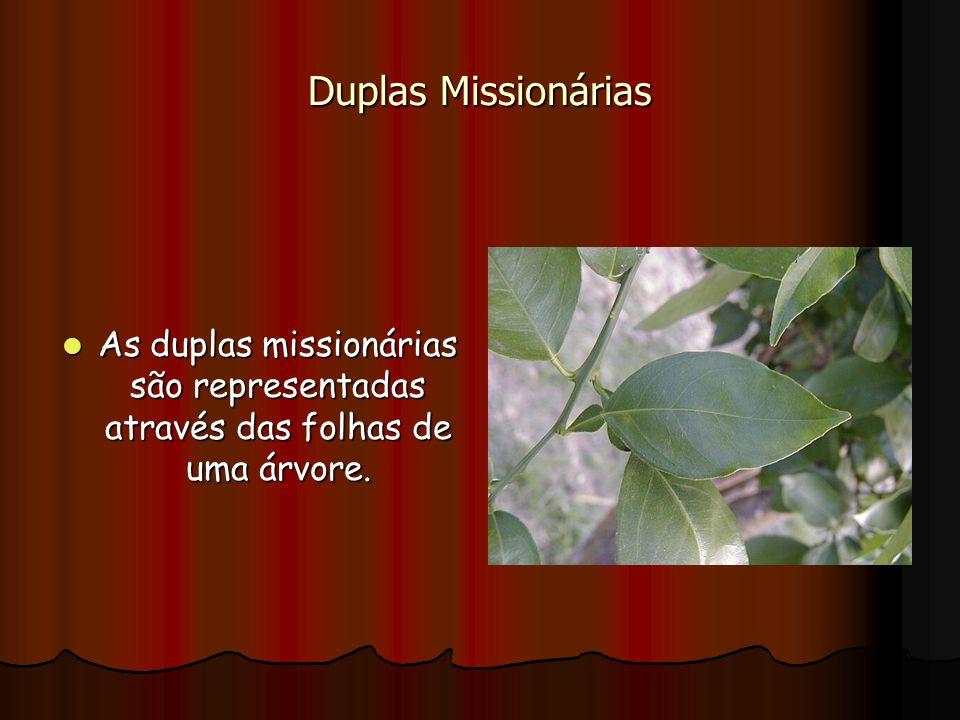 Duplas Missionárias As duplas missionárias são representadas através das folhas de uma árvore. As duplas missionárias são representadas através das fo
