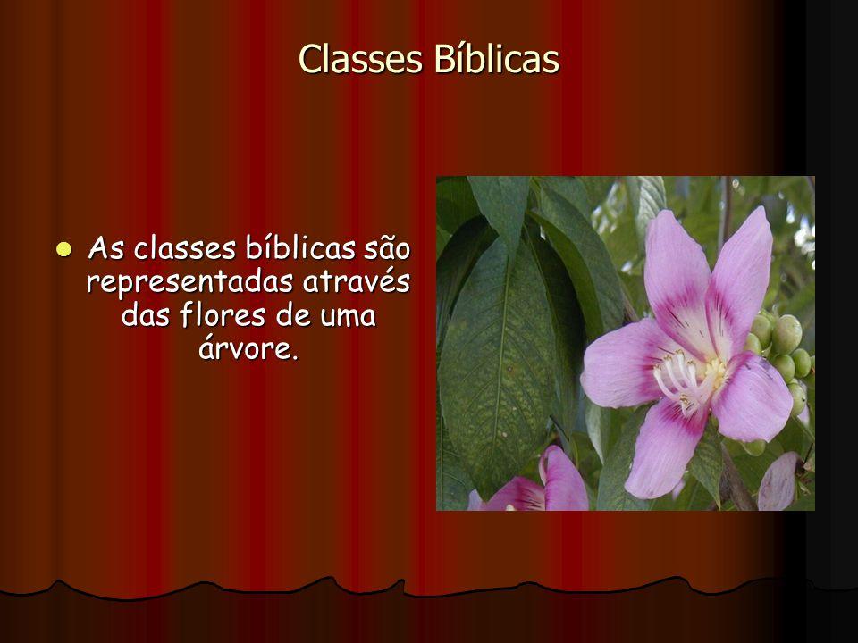 Classes Bíblicas As classes bíblicas são representadas através das flores de uma árvore. As classes bíblicas são representadas através das flores de u