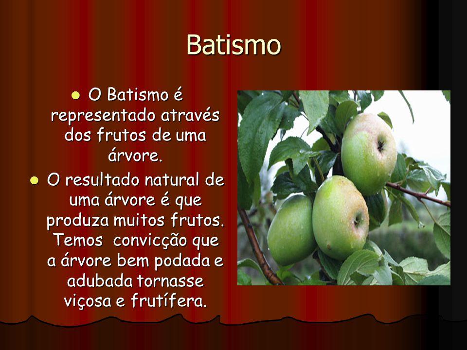 Batismo O Batismo é representado através dos frutos de uma árvore. O Batismo é representado através dos frutos de uma árvore. O resultado natural de u