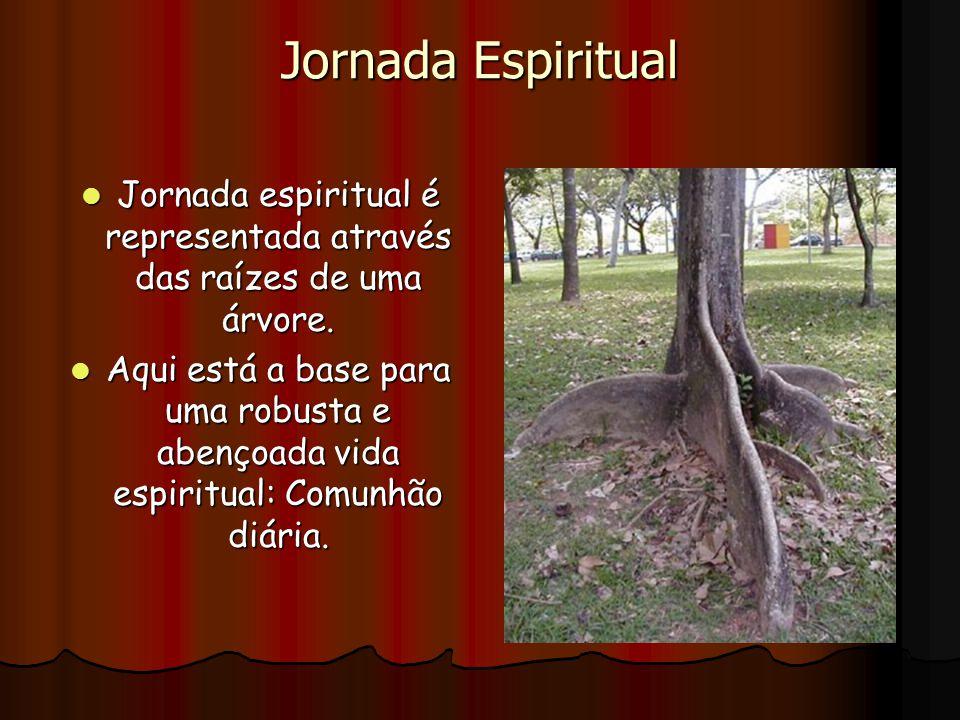 Jornada Espiritual Jornada espiritual é representada através das raízes de uma árvore. Jornada espiritual é representada através das raízes de uma árv