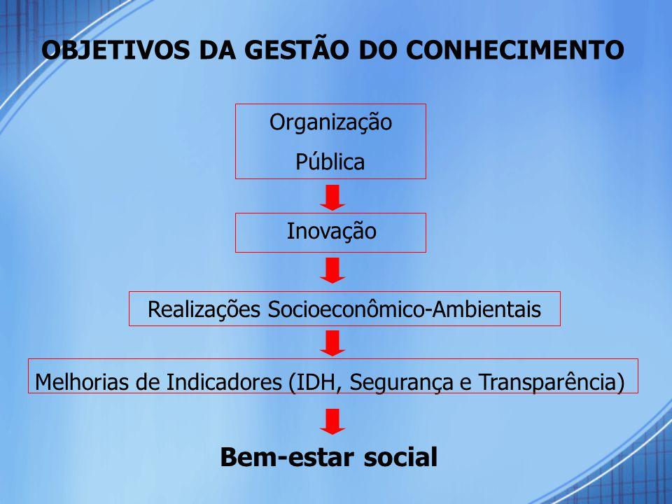OBJETIVOS DA GESTÃO DO CONHECIMENTO Organização Pública Realizações Socioeconômico-Ambientais Melhorias de Indicadores (IDH, Segurança e Transparência) Inovação Bem-estar social