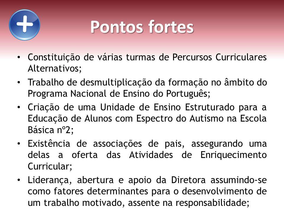 Pontos fortes Constituição de várias turmas de Percursos Curriculares Alternativos; Trabalho de desmultiplicação da formação no âmbito do Programa Nac