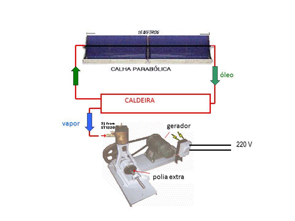CALDEIRA polia extra gerador óleo vapor 220 V