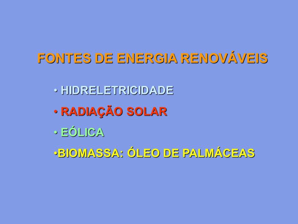 HIDRELETRICIDADE HIDRELETRICIDADE RADIAÇÃO SOLAR RADIAÇÃO SOLAR EÓLICA EÓLICA BIOMASSA: ÓLEO DE PALMÁCEASBIOMASSA: ÓLEO DE PALMÁCEAS FONTES DE ENERGIA