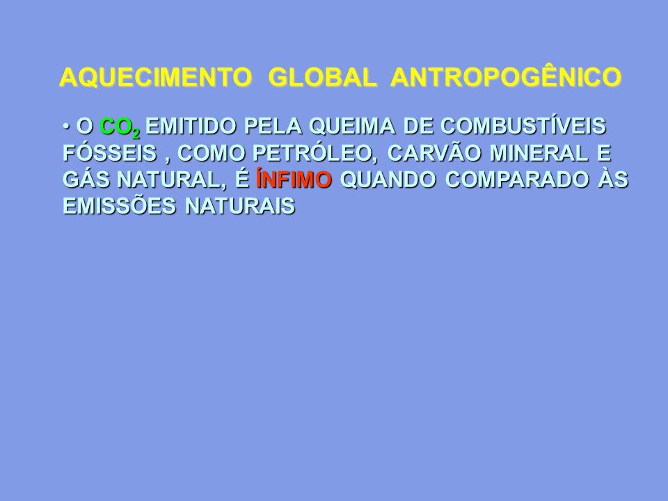AQUECIMENTO GLOBAL ANTROPOGÊNICO O CO 2 EMITIDO PELA QUEIMA DE COMBUSTÍVEIS FÓSSEIS, COMO PETRÓLEO, CARVÃO MINERAL E GÁS NATURAL, É ÍNFIMO QUANDO COMP
