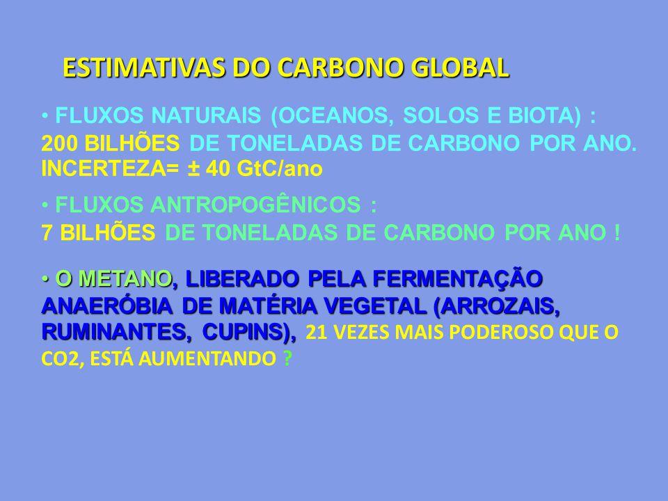 ESTIMATIVAS DO CARBONO GLOBAL FLUXOS NATURAIS (OCEANOS, SOLOS E BIOTA) : 200 BILHÕES DE TONELADAS DE CARBONO POR ANO. INCERTEZA= ± 40 GtC/ano FLUXOS A