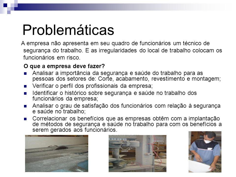 Problemáticas A empresa não apresenta em seu quadro de funcionários um técnico de segurança do trabalho. E as irregularidades do local de trabalho col
